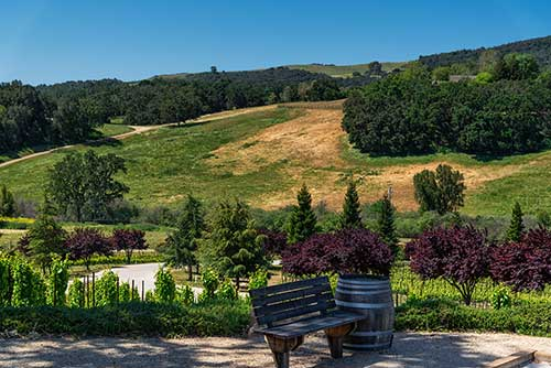 Denner Winery, Paso Robles