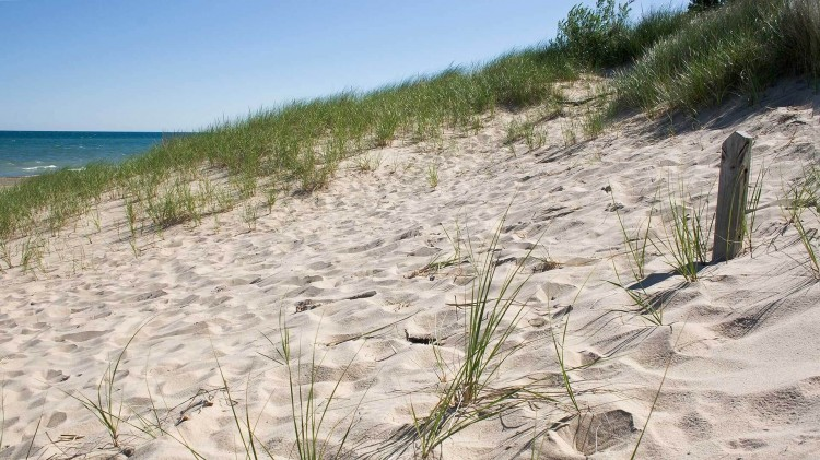 10 Facts About America's 61st National Park: Indiana Dunes National Park